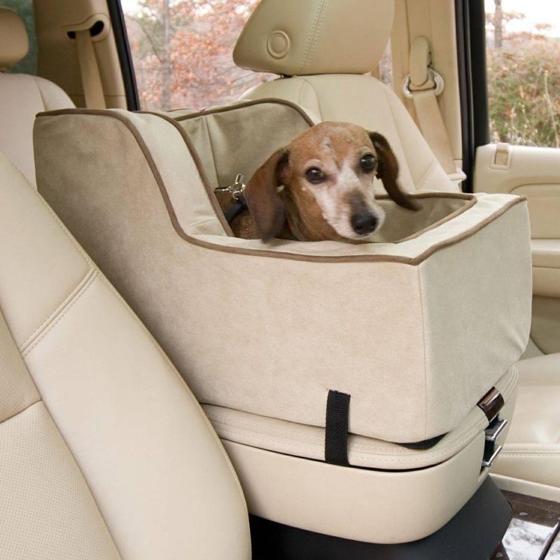 Наилучшим вариантом транспортировки животных являются автокресла, которые обеспечивают безопасность и комфорт во время путешествий.