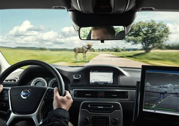 2015-volvo-xc90-safety-tech-animal-detection2-600-001